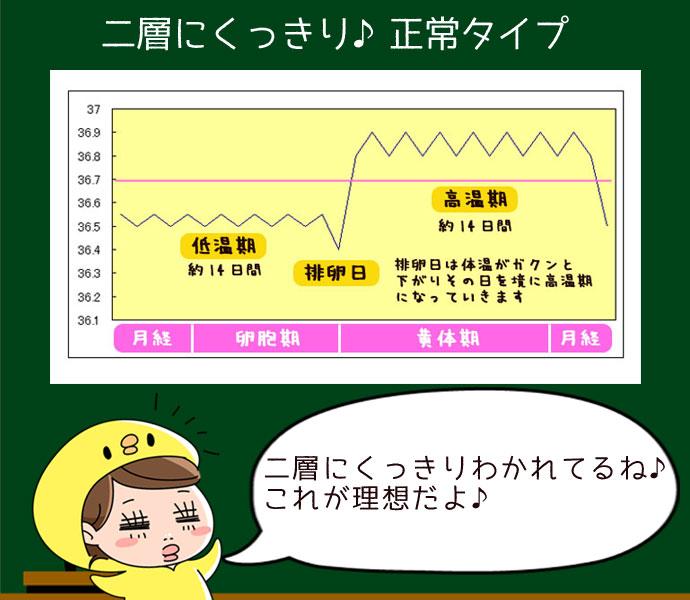 二層にくっきり基礎体温表