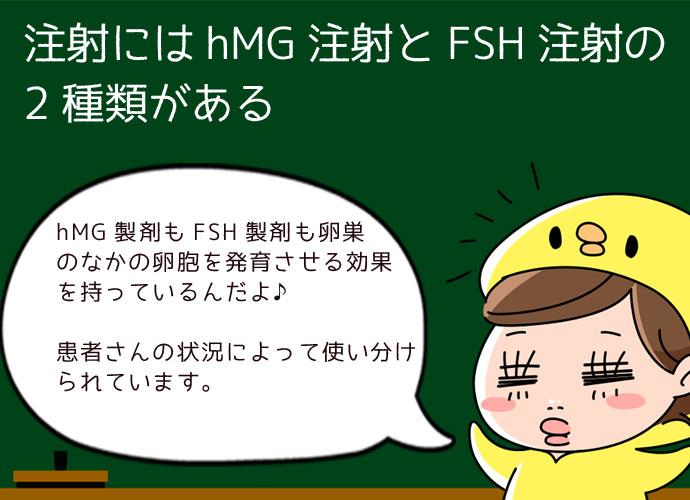 hMG注射とFSH注射の違い