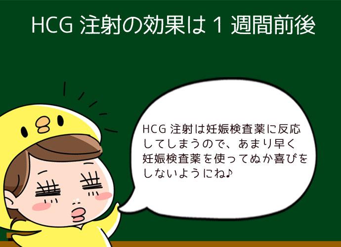 HCG注射の効果はいつまで?何日効果が持続する?