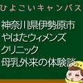 神奈川県伊勢原市やはたウィメンズクリニック母乳外来口コミ