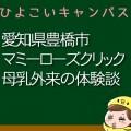 愛知県豊橋市マミーローズクリックの母乳外来、母乳相談室口コミ