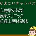 広島県安芸郡藤東クリニックの産婦人科での妊娠出産口コミ