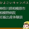 神奈川県相模原市相模野病院の産婦人科での妊娠出産口コミ