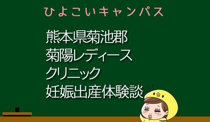 熊本県菊池郡菊陽レディースクリニックの産婦人科での妊娠出産口コミ