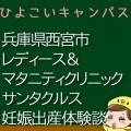 兵庫県西宮市レディース&マタニティクリニックサンタクルス・ザ・シュクガワの産婦人科での妊娠出産口コミ