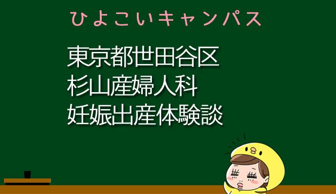 東京都世田谷区杉山産婦人科の産婦人科での妊娠出産口コミ
