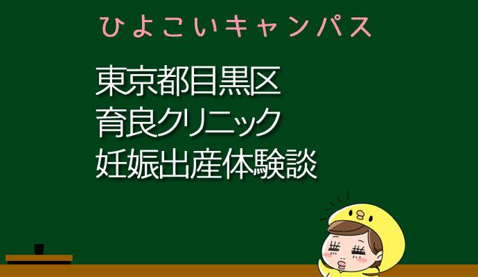 東京都目黒区育良クリニックの産婦人科での妊娠出産口コミ